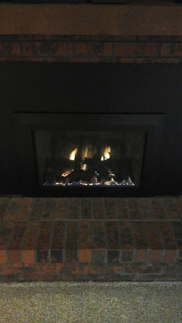Olivet, MI - Fireplace tune-up