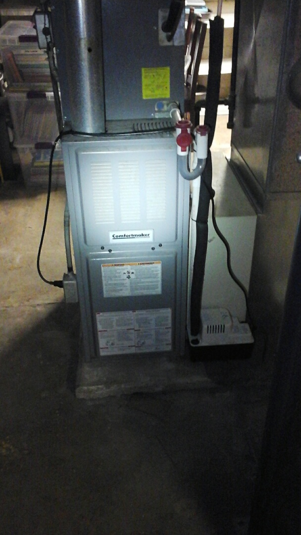 Albion, MI - Replacement of the flame rectification sensor on a Coleman, 80% efficient, gas furnace.