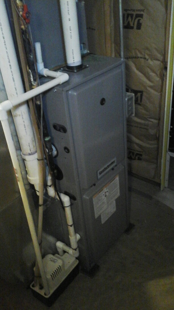 East Leroy, MI - Replacement of the induced draft fan motor on a high-efficiency, condensing, gas furnace.