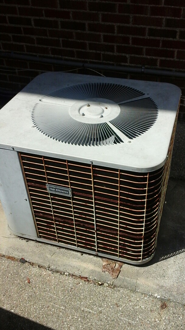 Marshall, MI - Yearly maintenance tune-up on a old Payne air-conditioning unit with R - 22 refrigerant charge.