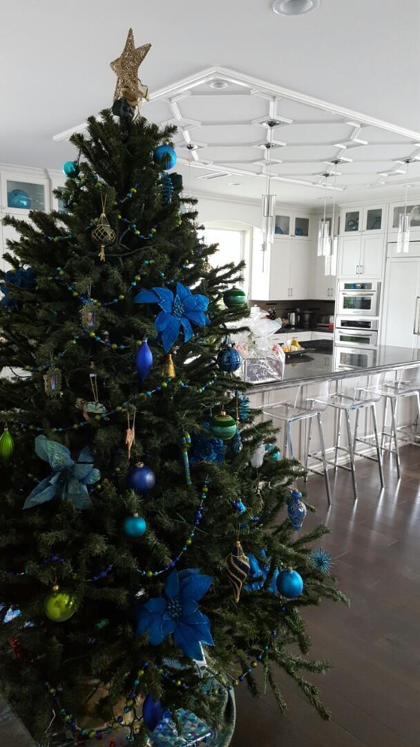 San Diego, CA - Merry Christmas