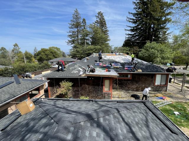 Sebastopol, CA - Action shot! This job's a big one: three structures won one property being prepped for Gutter Helmet install after roofing, gutters, and dry rot repairs. Keeping us busy and keeping homes protected!