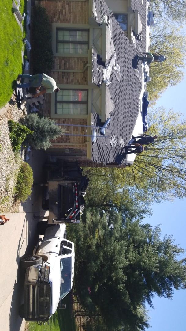 Glen Carbon, IL - New designer roof