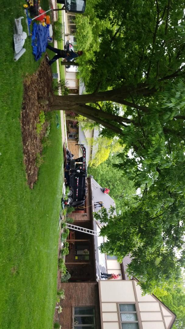Glen Carbon, IL - Storm remediation