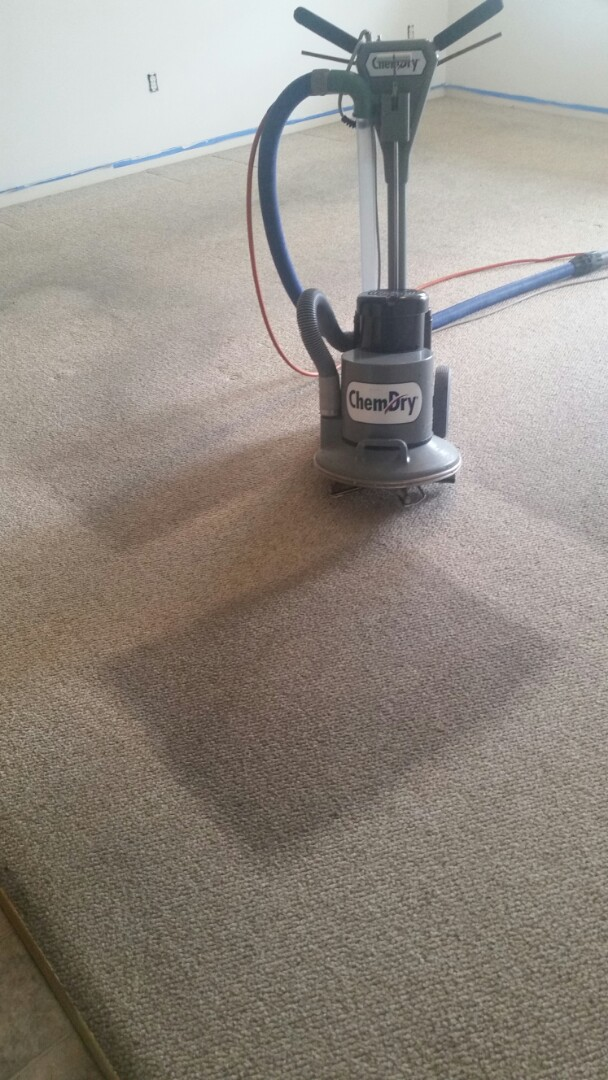 Hagerstown, MD - This berber carpet cleaned up like new!