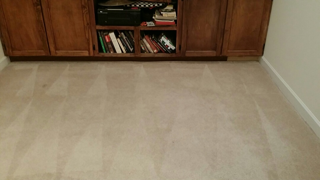 Frederick, MD - Carpet clean up great