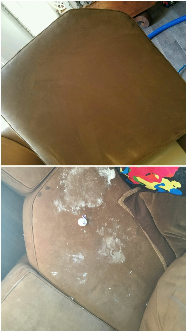 "Frederick, MD - This families 4 legged furry friend ate a whole bottle of Desitin and the end result wound up on the family room sofa. ?? Talk about a difference! This is an amazing before and after photo of the ""scene of the crime."""