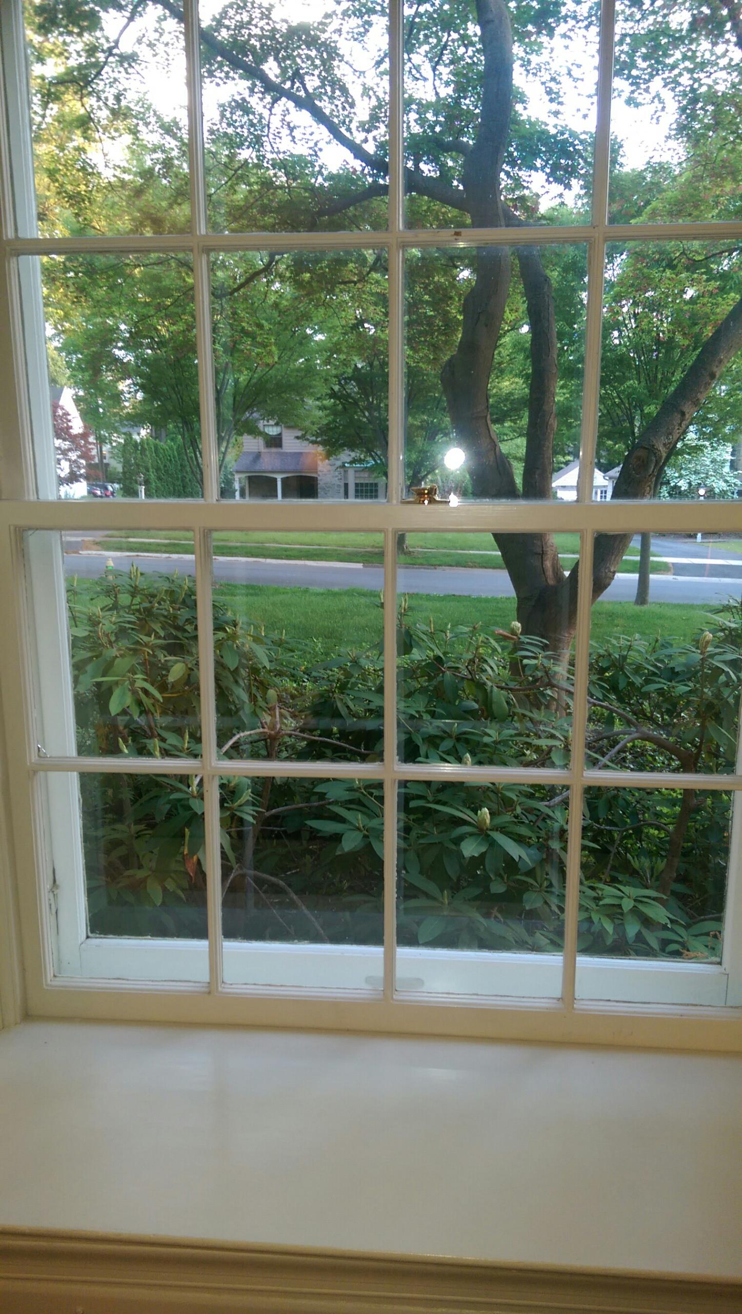 Wilmington, DE - Replacing these wood windows with the Renewal by Andersen  Fibrex replacement window in Wilmington Delaware