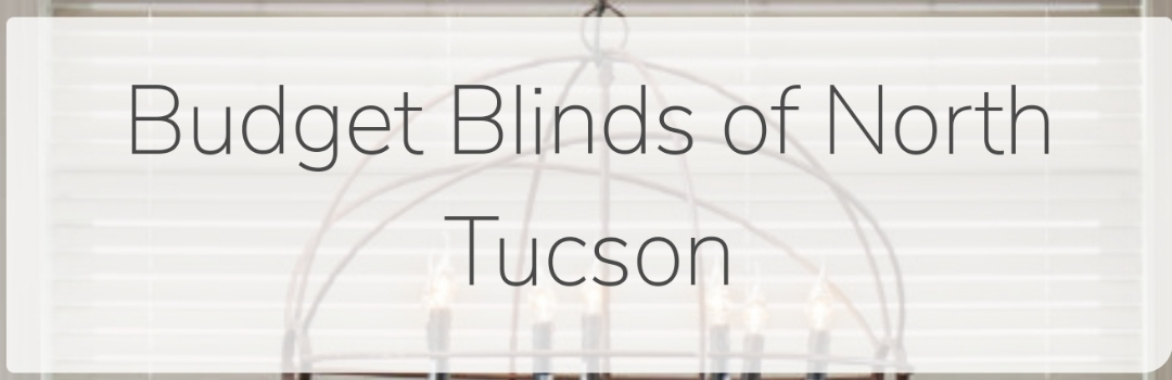 Oro Valley, AZ - Monthly filter change for north budget blinds