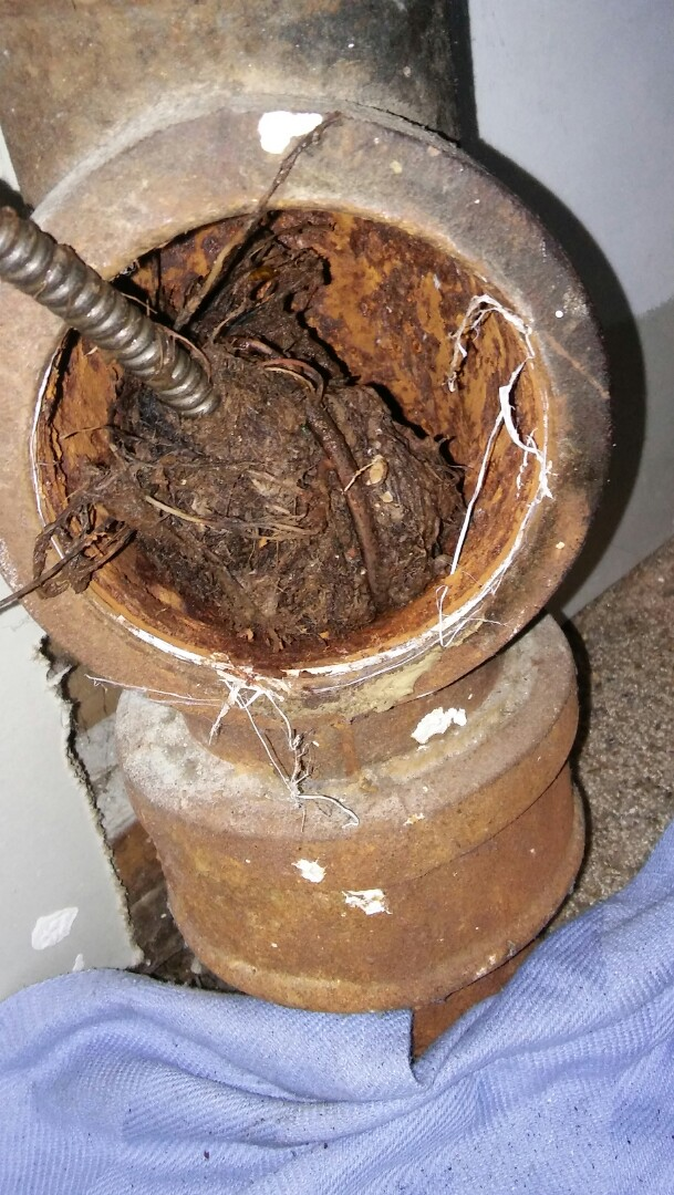 Belmont, MA - Saturday mid day/evening 24 hour emergency dispatch drain clearing. Drain services. Clearing roots out of sewer drain. Drain repairs. Snaking drains.