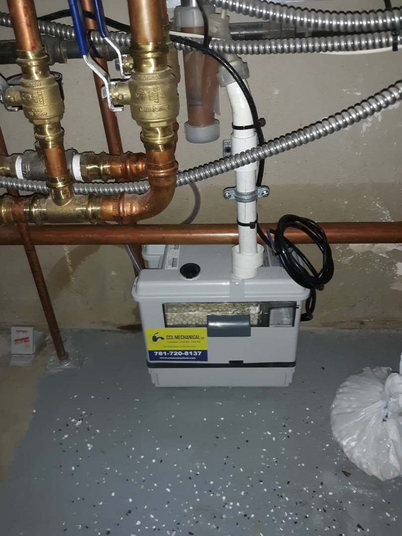 Cambridge, MA - Condensate pump replacement
