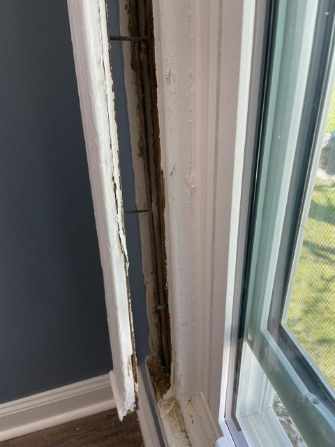 Frederick, MD - Old, rotted frames leads to a window replacement project