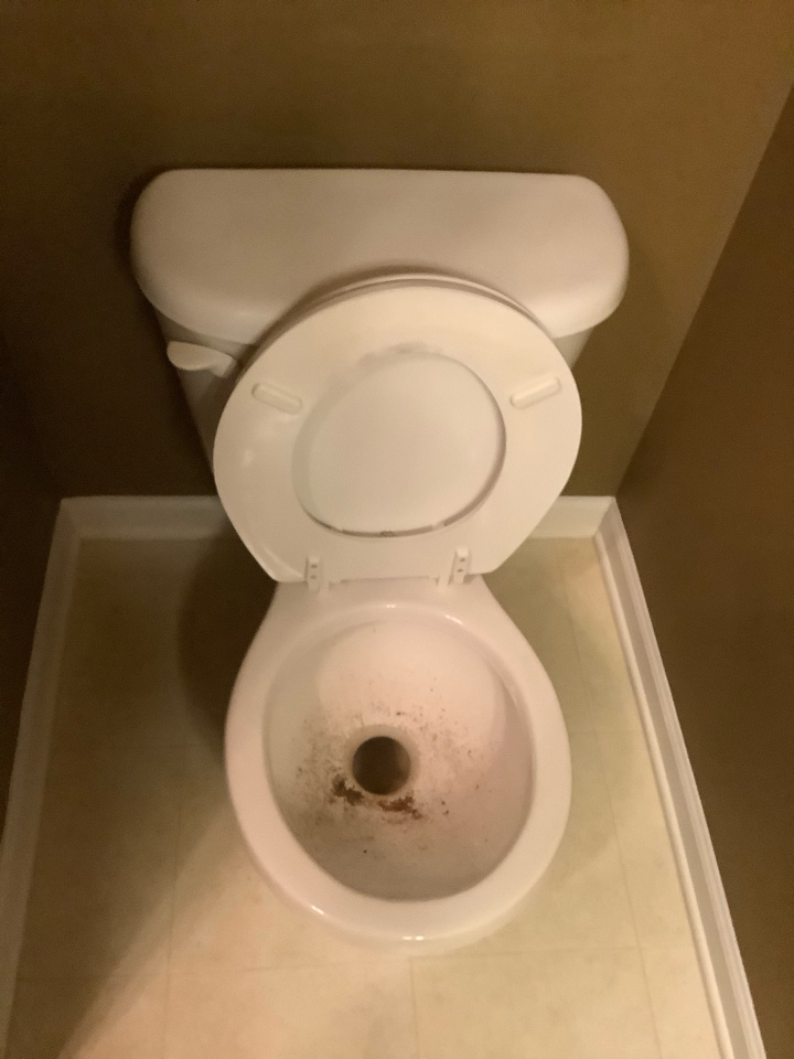 Clear clogged toilet