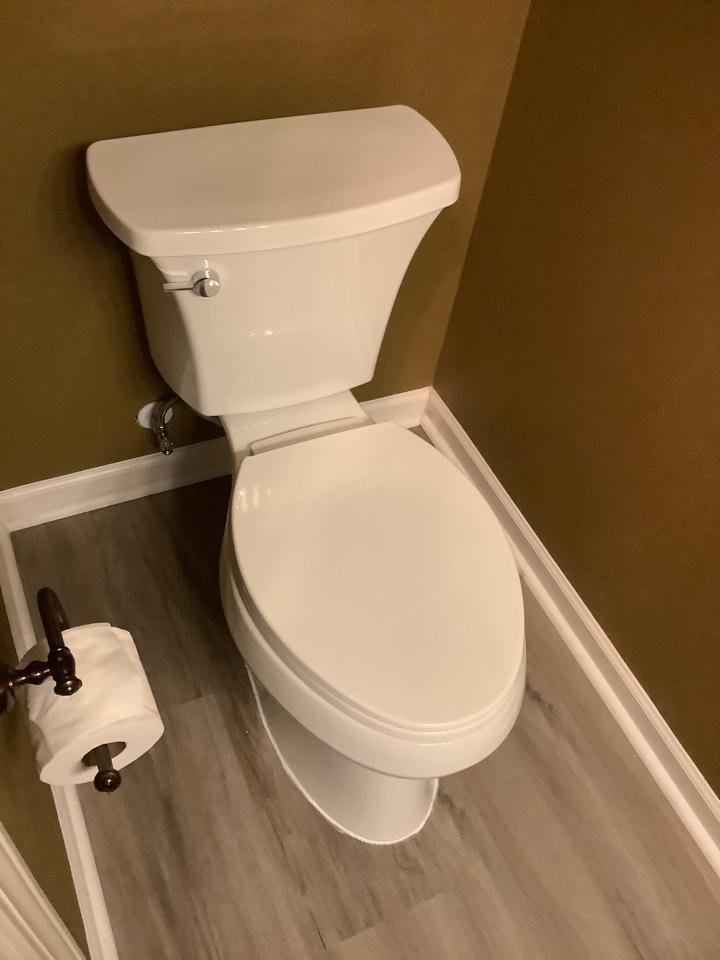 Woodstock, GA - Replace toilets