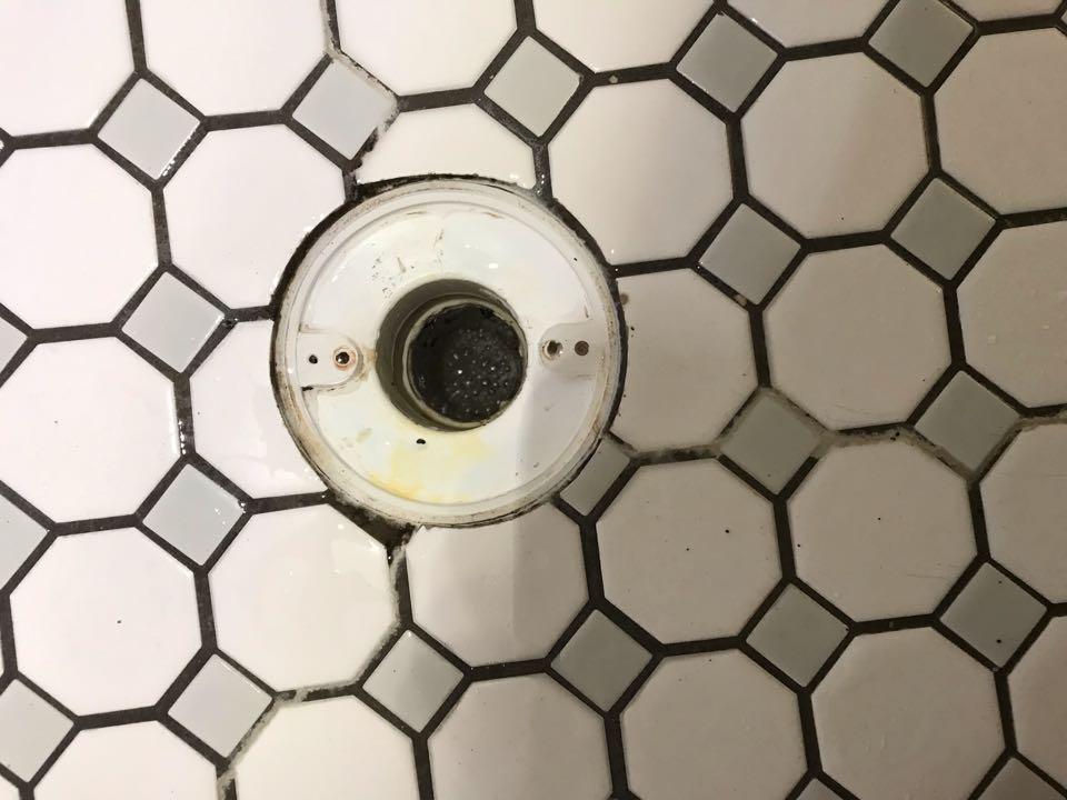 Clear shower drain