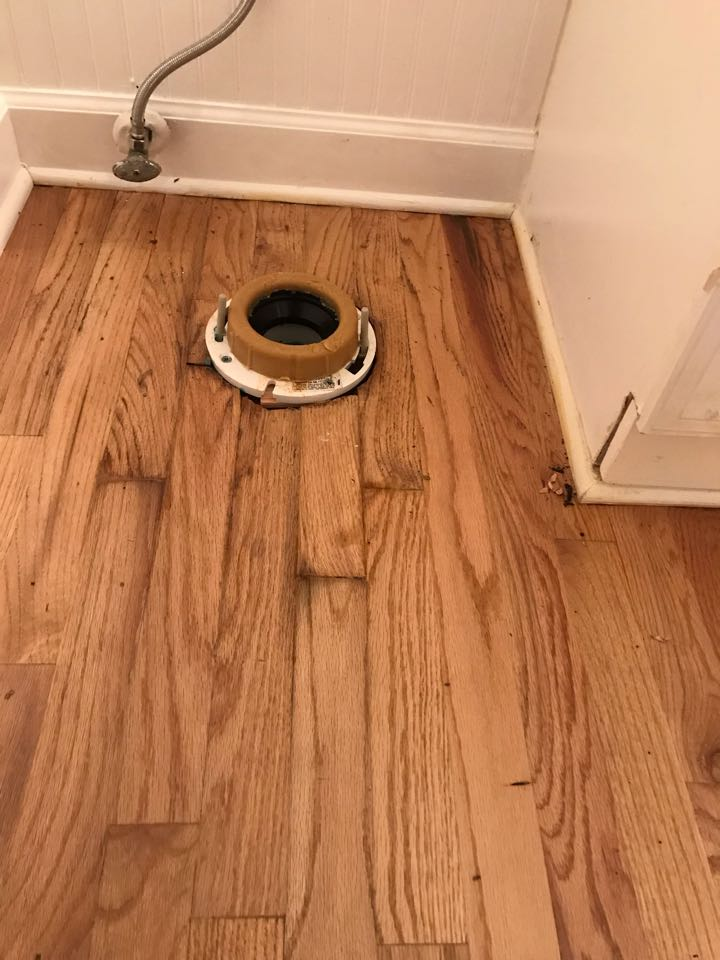 Marietta, GA - Toilet flange replacement