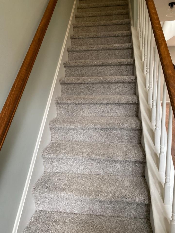 An elegant display of a freshly cleaned stairway