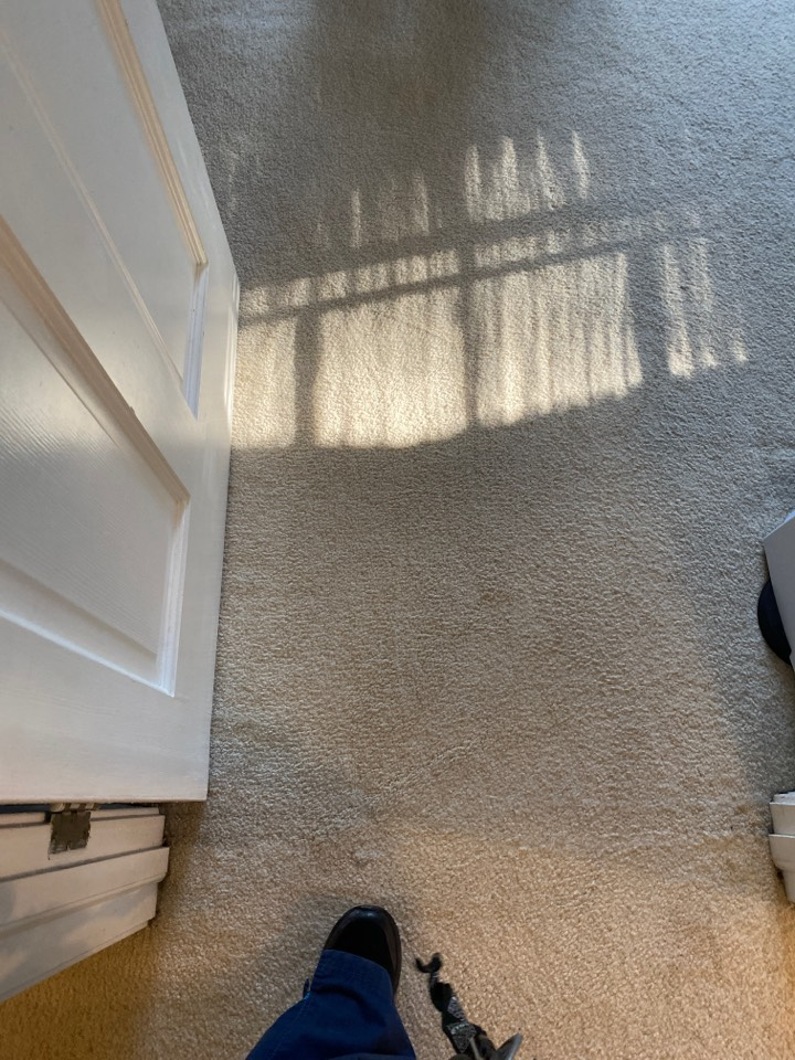 Greensboro, NC - vacuumed carpet