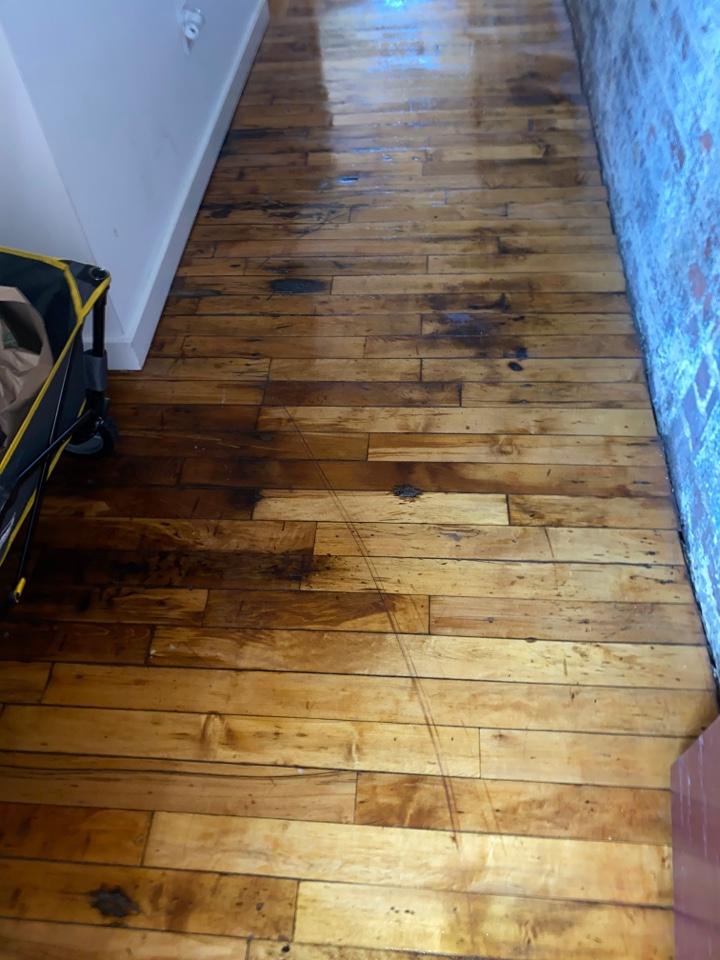Greensboro, NC - Mopped floors