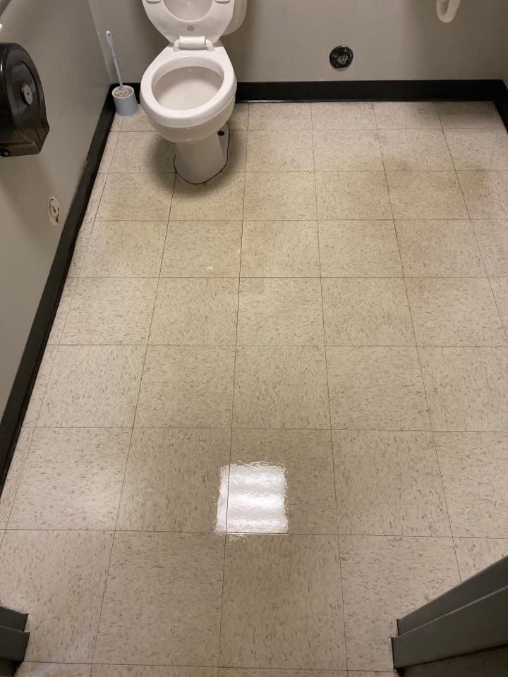 Mopped floors clean toilet
