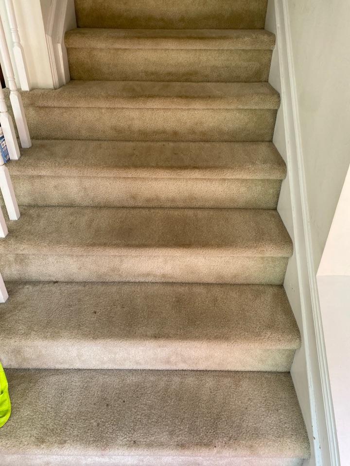 Vacuumed steps