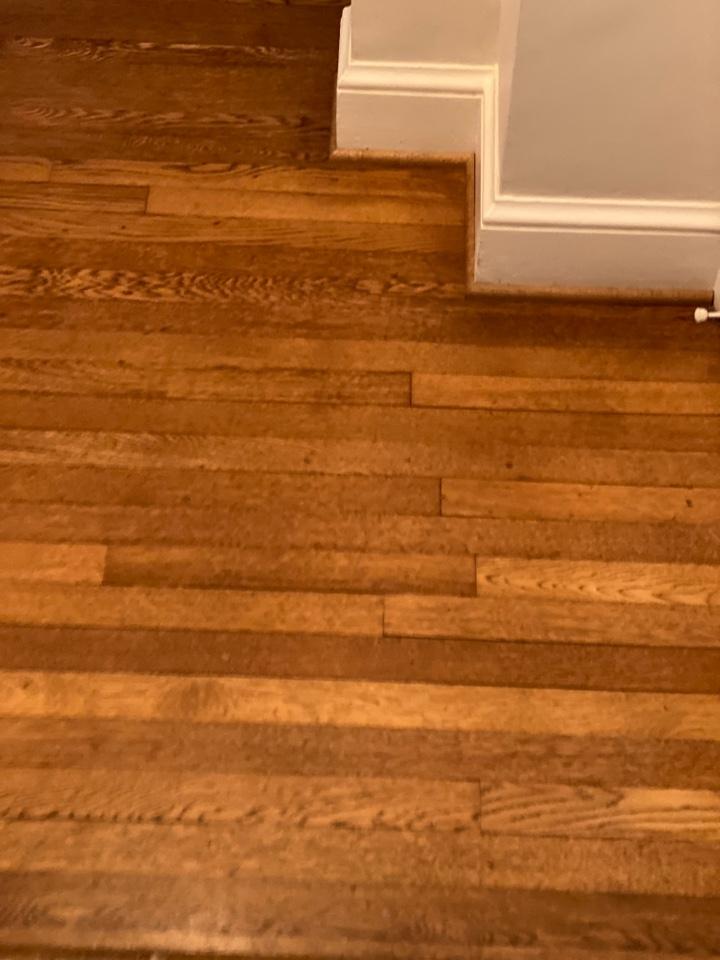 Mopped floors