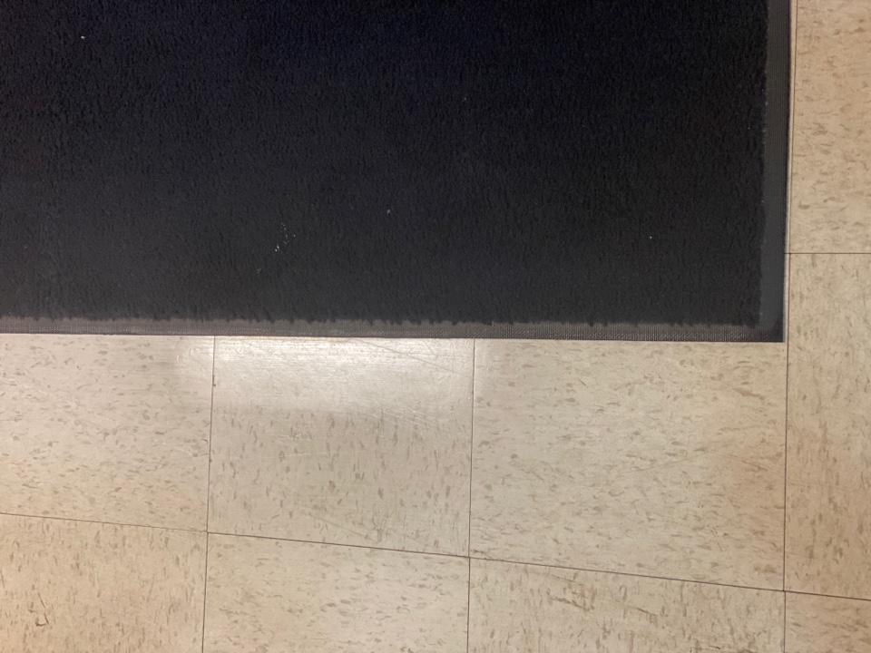 Mopped floor vacuumed rug