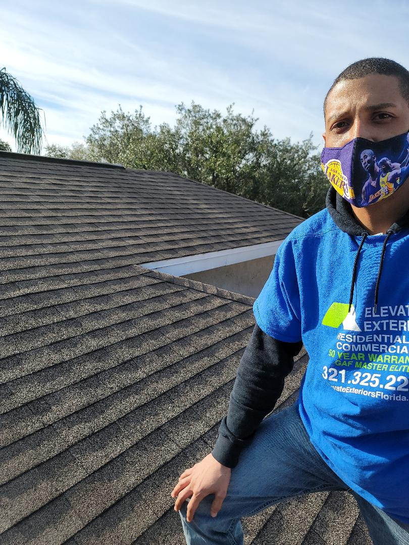 Tampa, FL - Inspection on shingles