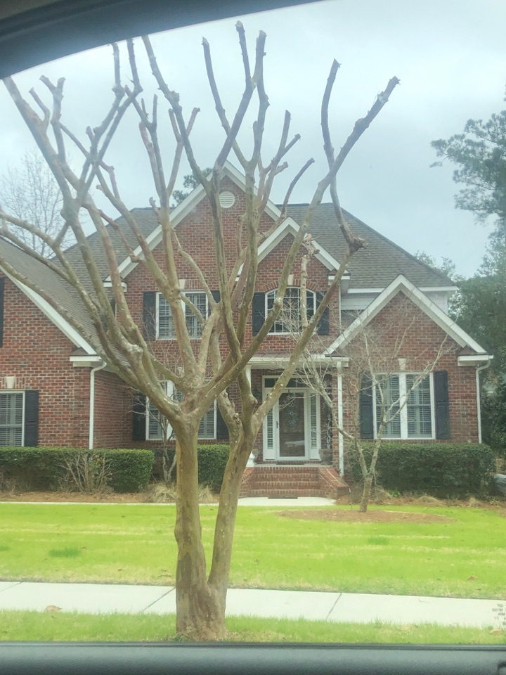 Wilmington, NC - Free inspection
