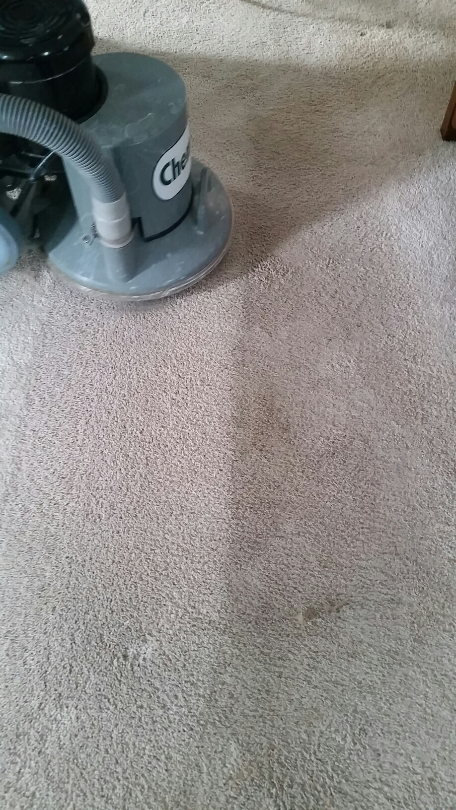 Ashland, VA - This carpet is cleaning up great!