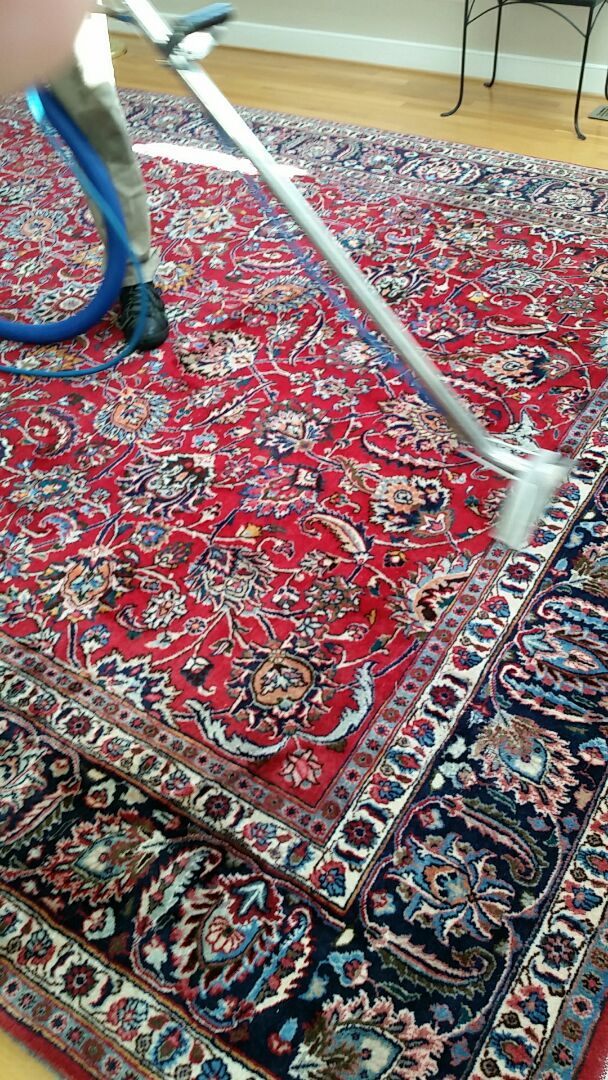 Richmond, VA - This beautiful oriental rug is cleaning up great