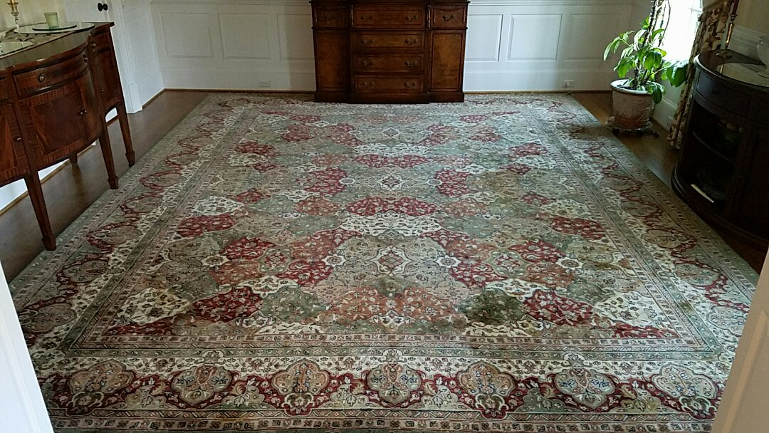 Manakin-Sabot, VA - We have been cleaning for this family for years. After a competitor ruined one of their high end Oriental rugs they only trust us to clean them. And this rug is absolutely gorgeous!