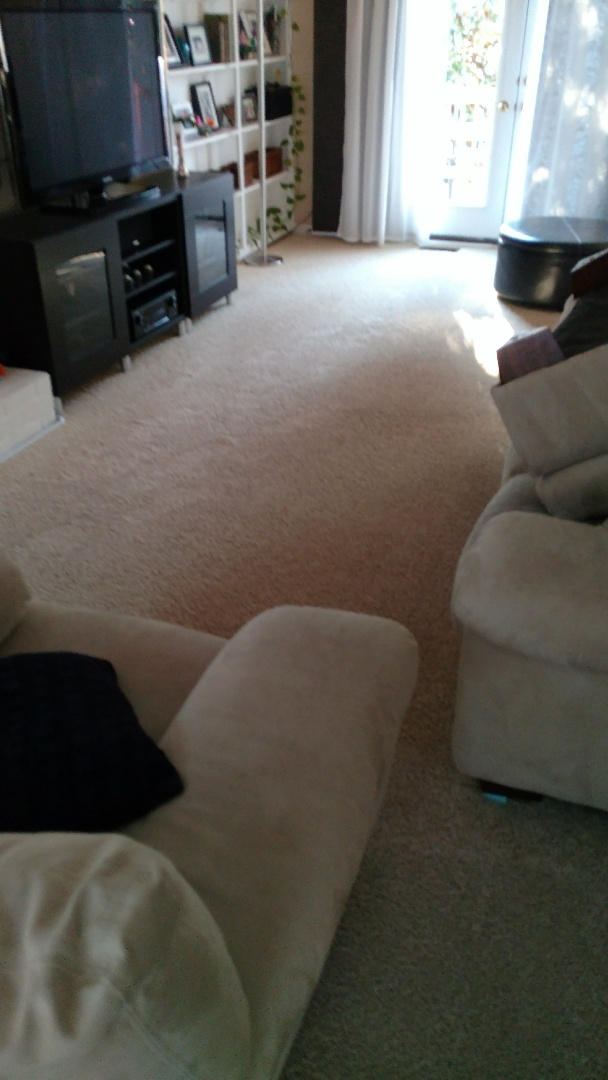 Glen Allen, VA - Living room was spotted with urine, not any more! Odor is gone and the home owner is as happy as could be!
