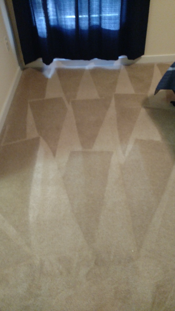 Colonial Heights, VA - First time having carpets professionally cleaned and turning out great!
