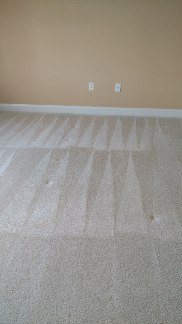 Midlothian, VA - Carpet cleaned up great!