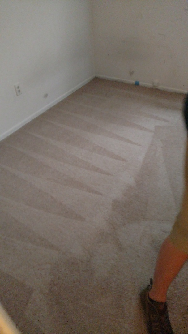 Richmond, VA - Rental property cleaning up great!