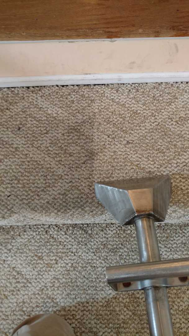 Chester, VA - Complete carpet care is the only way to prolong the life of your carpet! Let Chemdry show you how it's done!