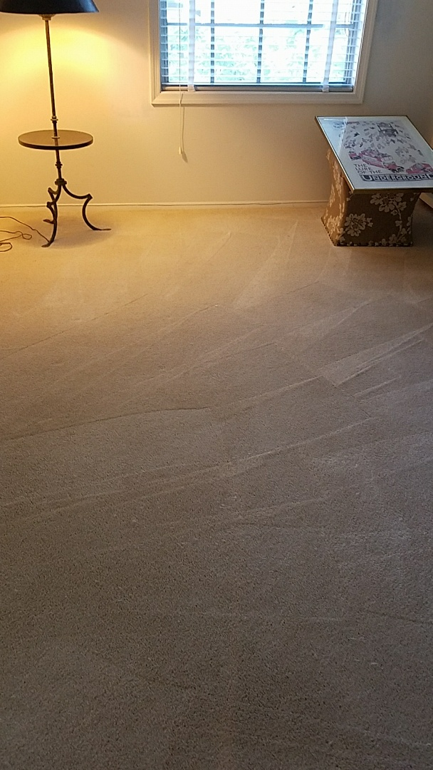 Richmond, VA - This carpet and 3 cats were no match for our patented technology. You'd never know, looks great!