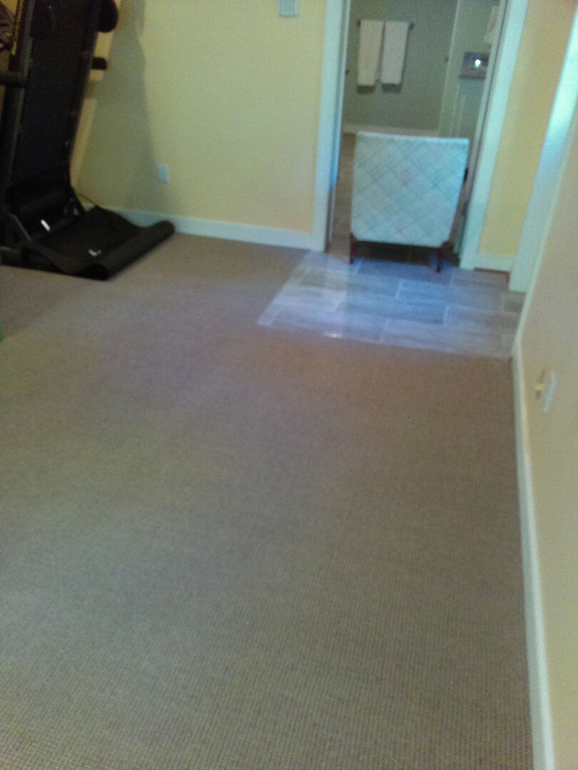 Henrico, VA - Clean up like new and bacteria and germs eliminated as well as odor too !