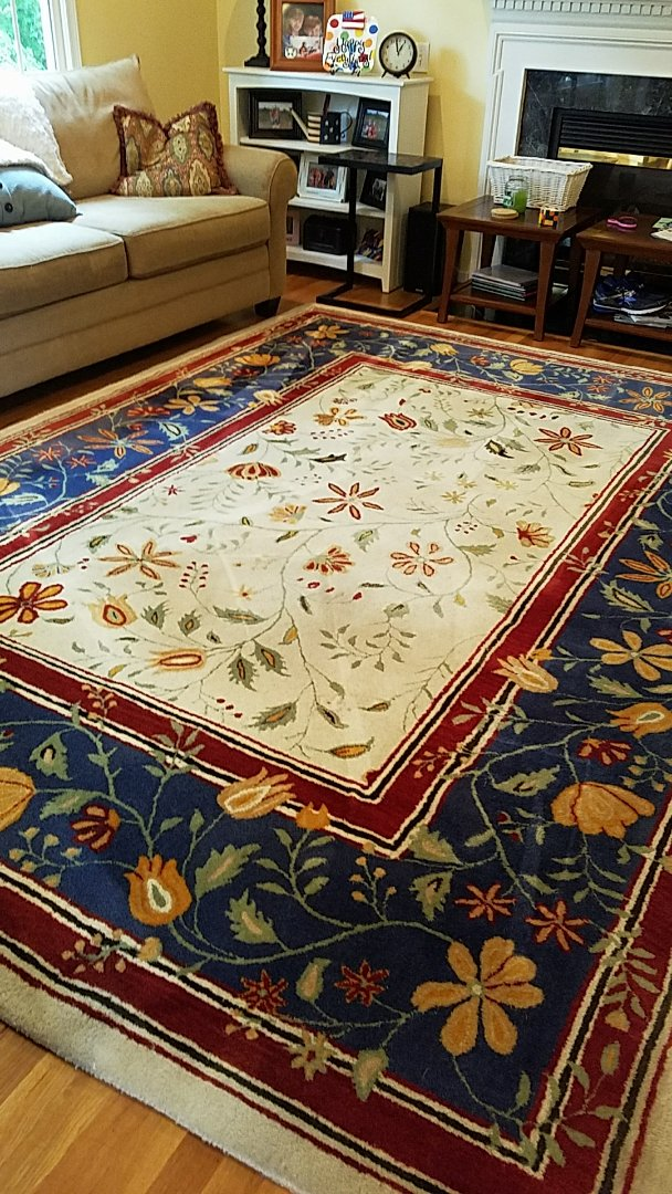Richmond, VA - This Oriental rug looks absolutely gorgeous after a good cleaning. Very nice!