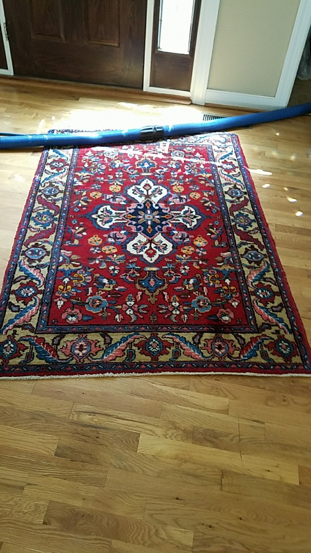 Richmond, VA - Just finished cleaning this Oriental rug and wow it looks great! So much brighter!