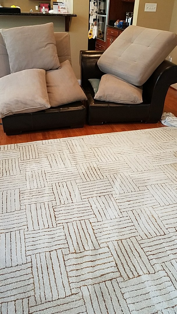 Maidens, VA - With only wood floors in this family's home the amount of dust that accumulated in this sofa and area rug was incredible! Looks so much better!