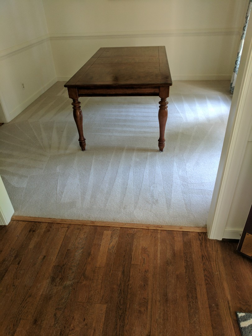 Chester, VA - Sanitized and cleaned this home. Cleaned up great and now healthier than before!