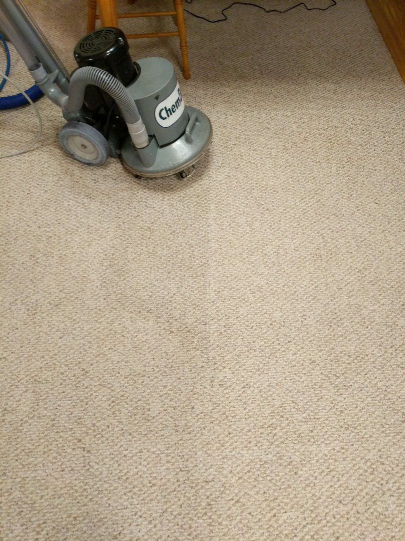 Chester, VA - The dark stain is urine. When treated with P.U.R.T, your carpets will look new!