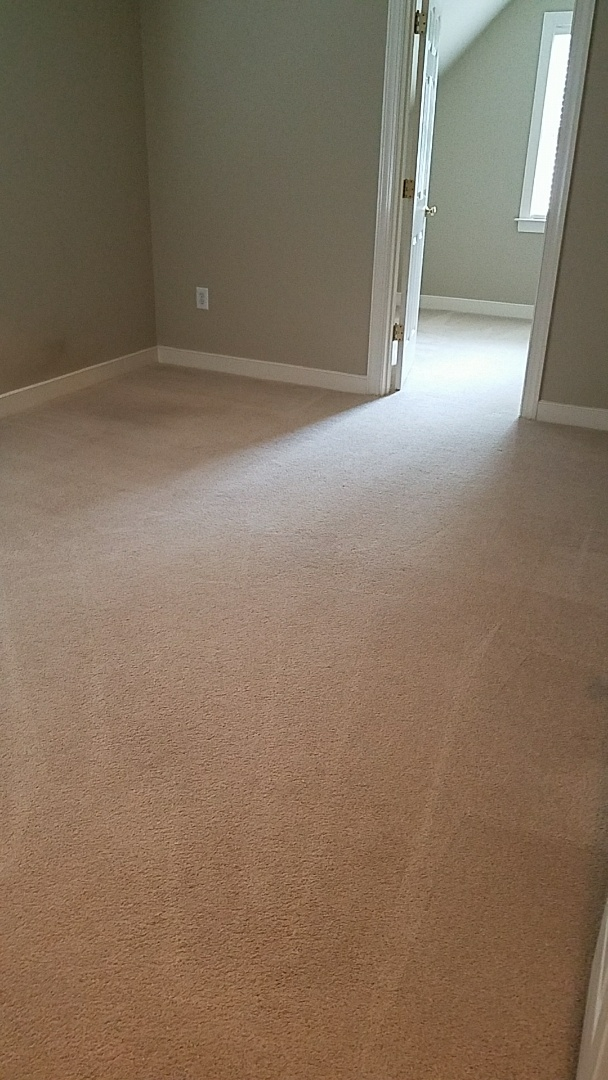 Maidens, VA - This family is moving in here today and had concerns that their dog would mark the previous owners pet stains, which there were an abundance of. This room has been treated and looks fantastic now. No more urine smell!