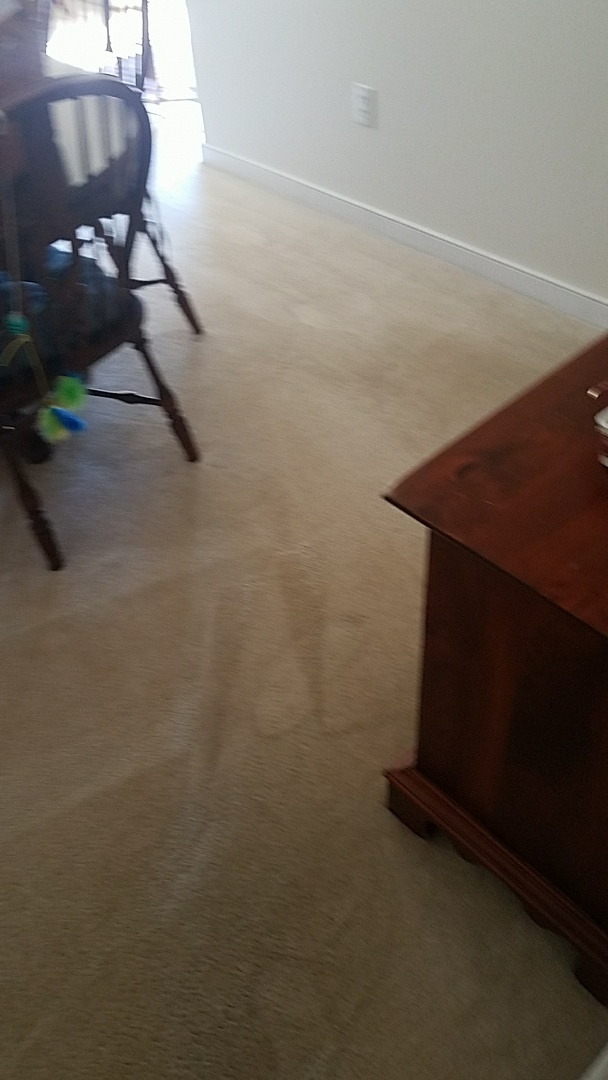 Chester Va Clean Carpets For A Review