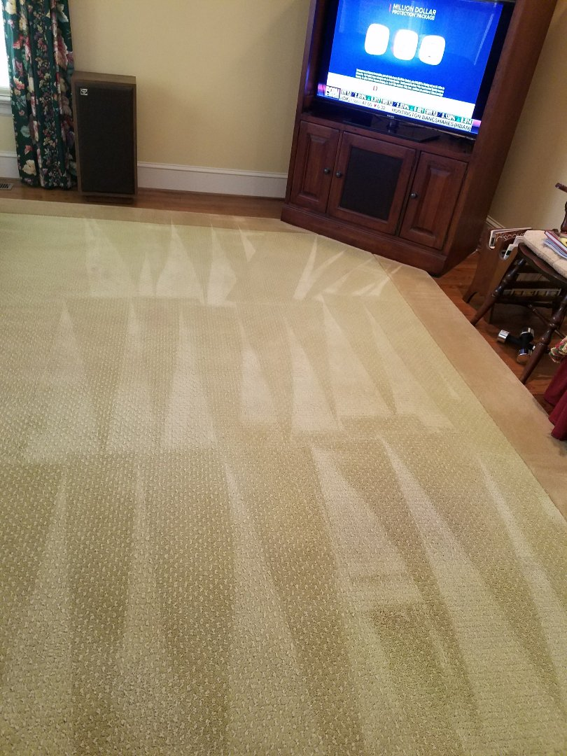 Mechanicsville Va Carpet Cleaning Service Rug