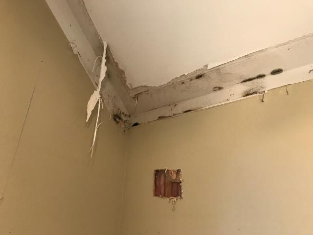 Addison, TX - Inspecting water damage at a home in Addison, Texas. The water damage was caused by rain water and gutters not being cleaned out regularly. The home will need restoration services for 3-5 days before reconstruction can begin.