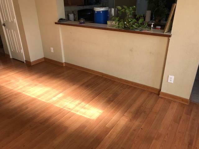 Inspecting water damage at a home in Rockwall, Texas caused by a slab leak. The water damaged the laminate flooring as well as the drywall.