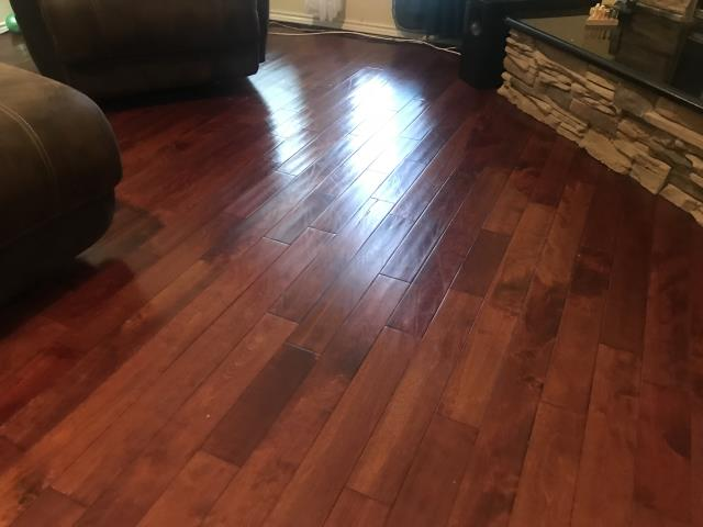 Fort Worth, TX - Inspecting a water damage that has affected engineered wood floors at a family's home in Fort Worth, Texas.